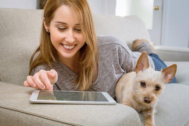 タブレットで電子アルプを楽しむ女性と犬